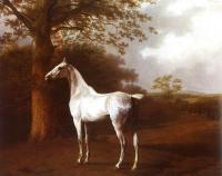 Agasse, Jacques-Laurent - White Horse in Pasture