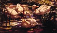 Alexander Koester - Ducks in a Forest Pond