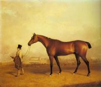 Ferneley, John - Emlius, Winter of the Derby, held by a Groom at Doncaster