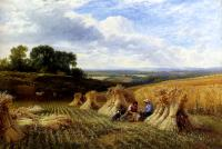 George Cole, Snr - Harvest Field